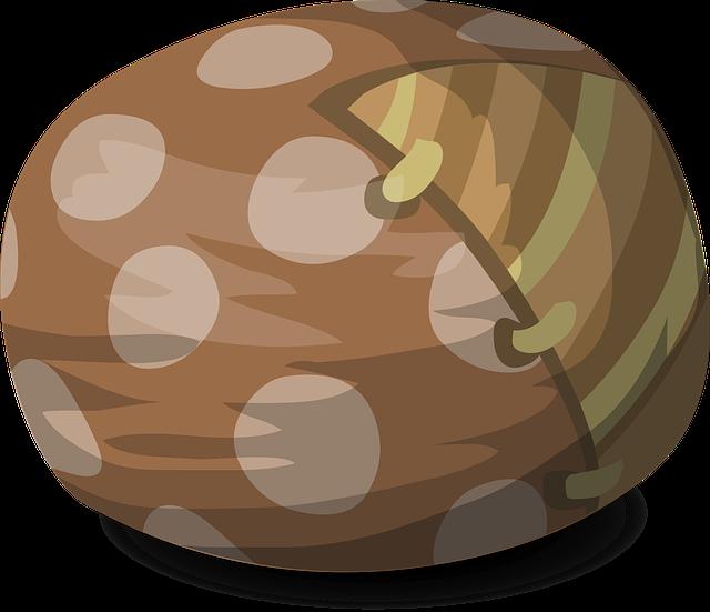 fazole