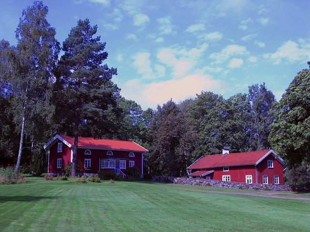 červené domy, zahraa, stromy